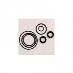 Sachet de Joints de rechange - Tete standard - 90382