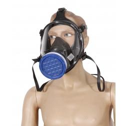 Cartouche poussière 100LD P3R - la Paire - 6026